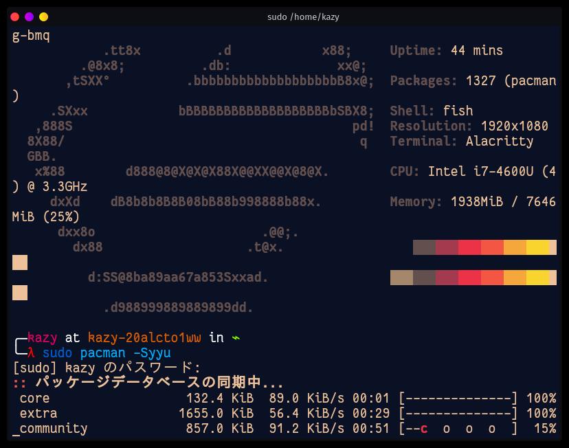 Garuda Linux Terminal
